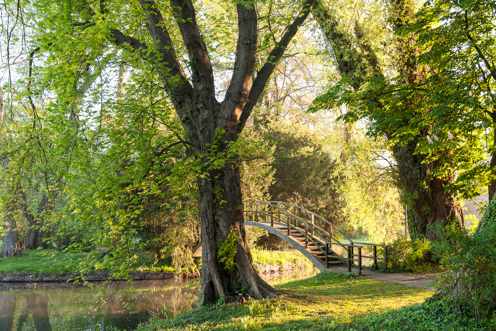 boogbrug, rivierenhof